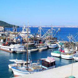 Kaljska ribarska flota u Batalazi